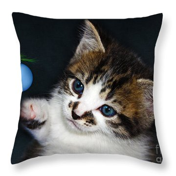 Gorgeous Christmas Kitten Throw Pillow by Terri Waters