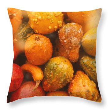 Throw Pillow featuring the photograph Gorgeous Gourds by Ira Shander