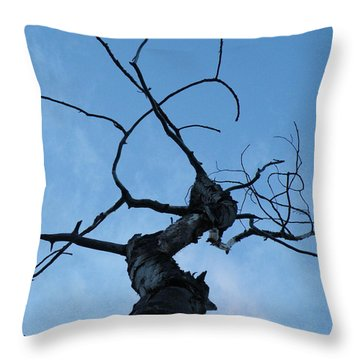 Throw Pillow featuring the photograph Gorgon by Brian Boyle
