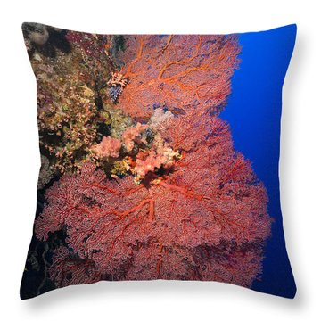 Throw Pillow featuring the photograph Gorgonians by Aaron Whittemore