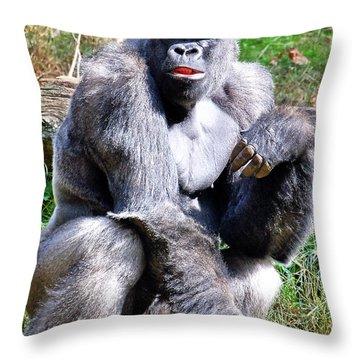 Gorilla Throw Pillow by Kathleen K Parker