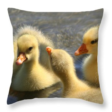 Gosling Gang Throw Pillow by Bob and Jan Shriner