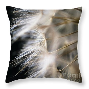 Gossamer Throw Pillow by Jan Bickerton
