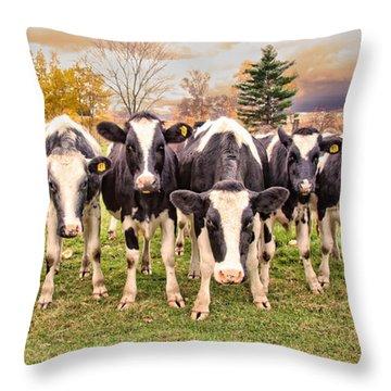 Got Grain? Throw Pillow
