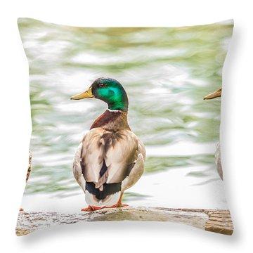 Got My Ducks In A Row Throw Pillow