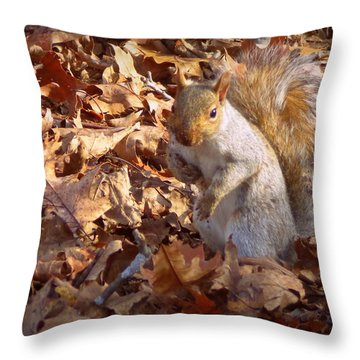 Got Nuts Throw Pillow