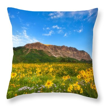 Gothic Meadow Throw Pillow by Darren  White