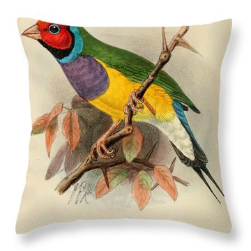 Gouldian Finch Throw Pillow by Dreyer Wildlife Print Collections