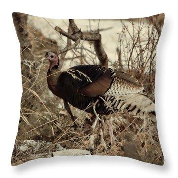 Gould's Wild Turkey Xii Throw Pillow