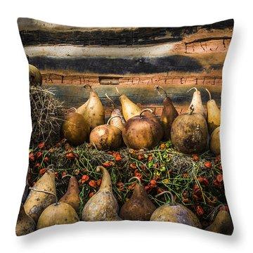 Gourds Throw Pillow by Debra and Dave Vanderlaan