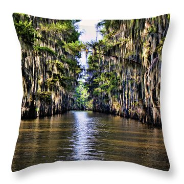 Government Ditch Throw Pillow by Lana Trussell