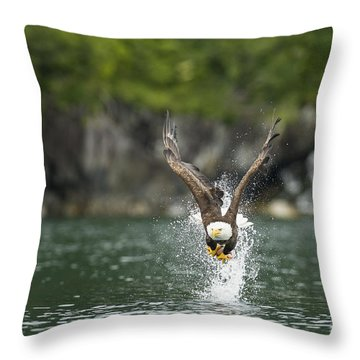 Apex Throw Pillow by Ted Raynor