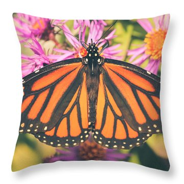 Throw Pillow featuring the photograph Grace And Beauty by Viviana  Nadowski
