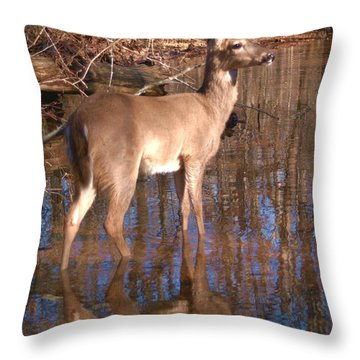 Grace Throw Pillow by Bill Stephens
