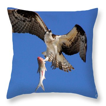 Grace In The Sky Throw Pillow