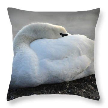 Throw Pillow featuring the photograph Grace by Randi Grace Nilsberg