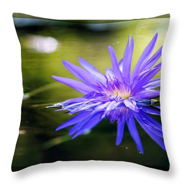 Graceful Divinity Throw Pillow by Charles Dobbs