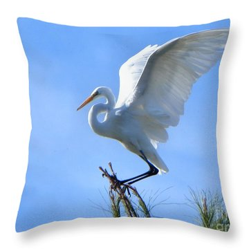 Throw Pillow featuring the photograph Graceful Landing by Deb Halloran