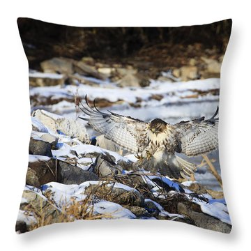 Throw Pillow featuring the photograph Graceful Landing by Gary Hall