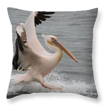 Throw Pillow featuring the photograph Graceful Landing by Taschja Hattingh