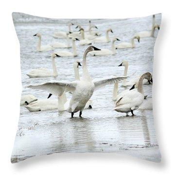 Graceful Throw Pillow by Lori Tordsen