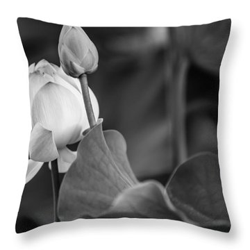 Graceful Lotus. Balck And White. Pamplemousses Botanical Garden. Mauritius Throw Pillow by Jenny Rainbow