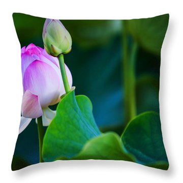 Graceful Lotus. Pamplemousses Botanical Garden. Mauritius Throw Pillow