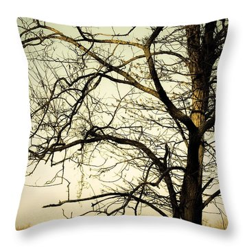 Graceful Tree Throw Pillow by Cara Moulds
