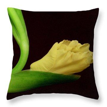 Gracefully Dawning Throw Pillow by Deborah  Crew-Johnson
