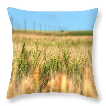 Grain Field - Hdr Photo Throw Pillow