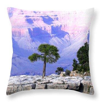 Grand Canyon 73 Throw Pillow by Will Borden