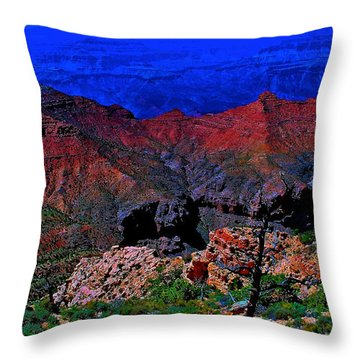 Grand Canyon Beauty Exposed Throw Pillow