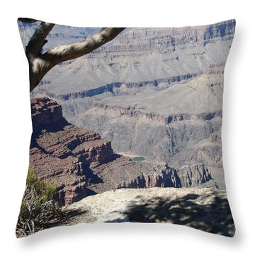Throw Pillow featuring the photograph Grand Canyon by David S Reynolds