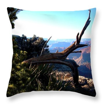 Grand Canyon Dead Tree Throw Pillow