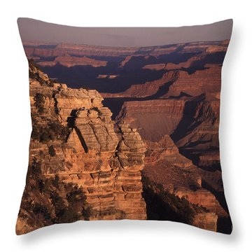 Throw Pillow featuring the photograph Grand Canyon Sunrise by Liz Leyden