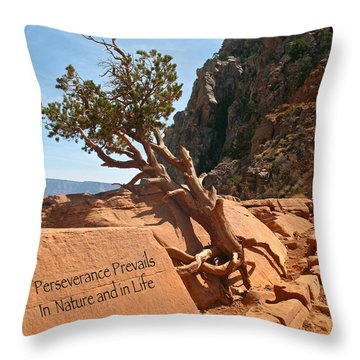 Grand Canyon Survivor Throw Pillow by Kathleen Scanlan