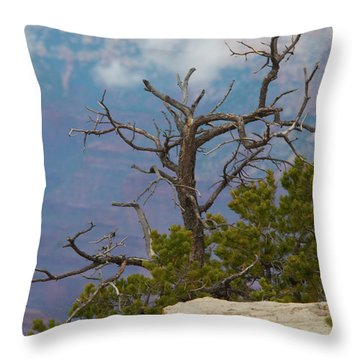Throw Pillow featuring the photograph Grand Canyon Tree by Rod Wiens