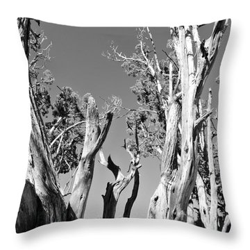 Grand Canyon Trees Throw Pillow