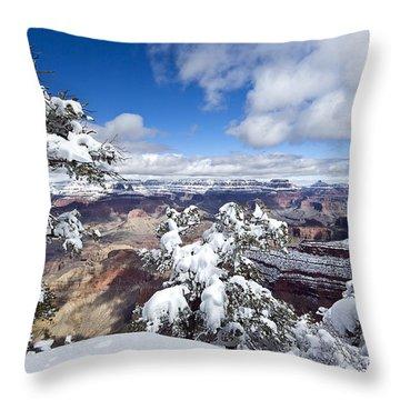 Grand Canyon Winter - 1 Throw Pillow