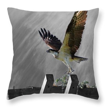Grand Ole Osprey Throw Pillow by Davandra Cribbie