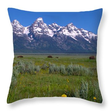 Grand Teton Bison Throw Pillow by Brian Harig
