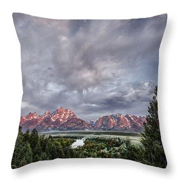 Grand Treeton Throw Pillow by Jon Glaser