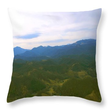 Grandfather Sugar Beech Mountains Throw Pillow