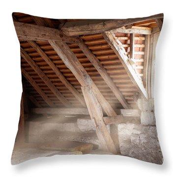Grandpa's Attic Throw Pillow