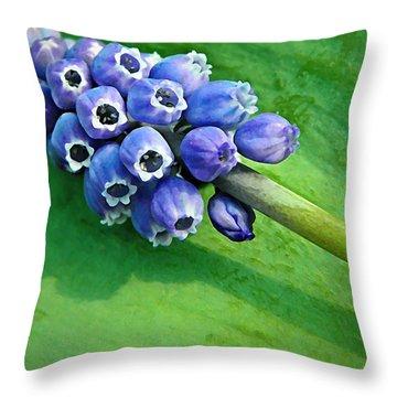 Grape Hyacinth Spike  Throw Pillow by Chris Berry