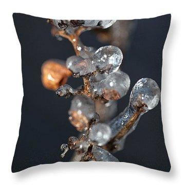Grape Ice Throw Pillow