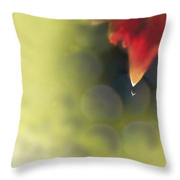 Grape Leaf Water Drop Throw Pillow by Kume Bryant