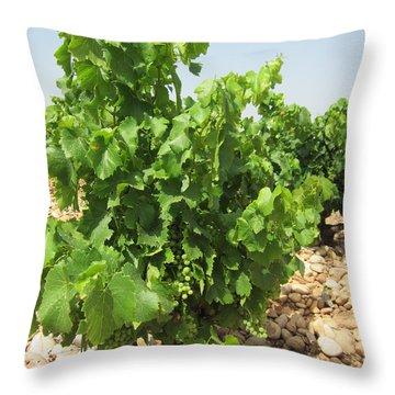 Grape Plant Throw Pillow by Pema Hou