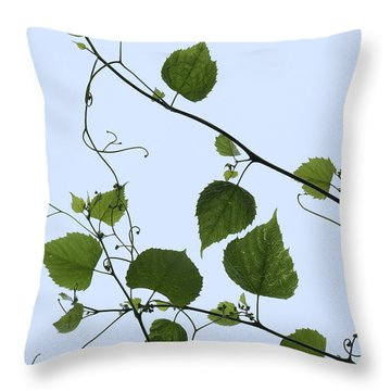 Grape Vine And Sky Throw Pillow