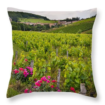 Throw Pillow featuring the photograph Grapes And Roses by Allen Sheffield